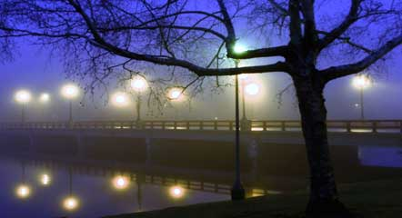 bridge-lights.jpg